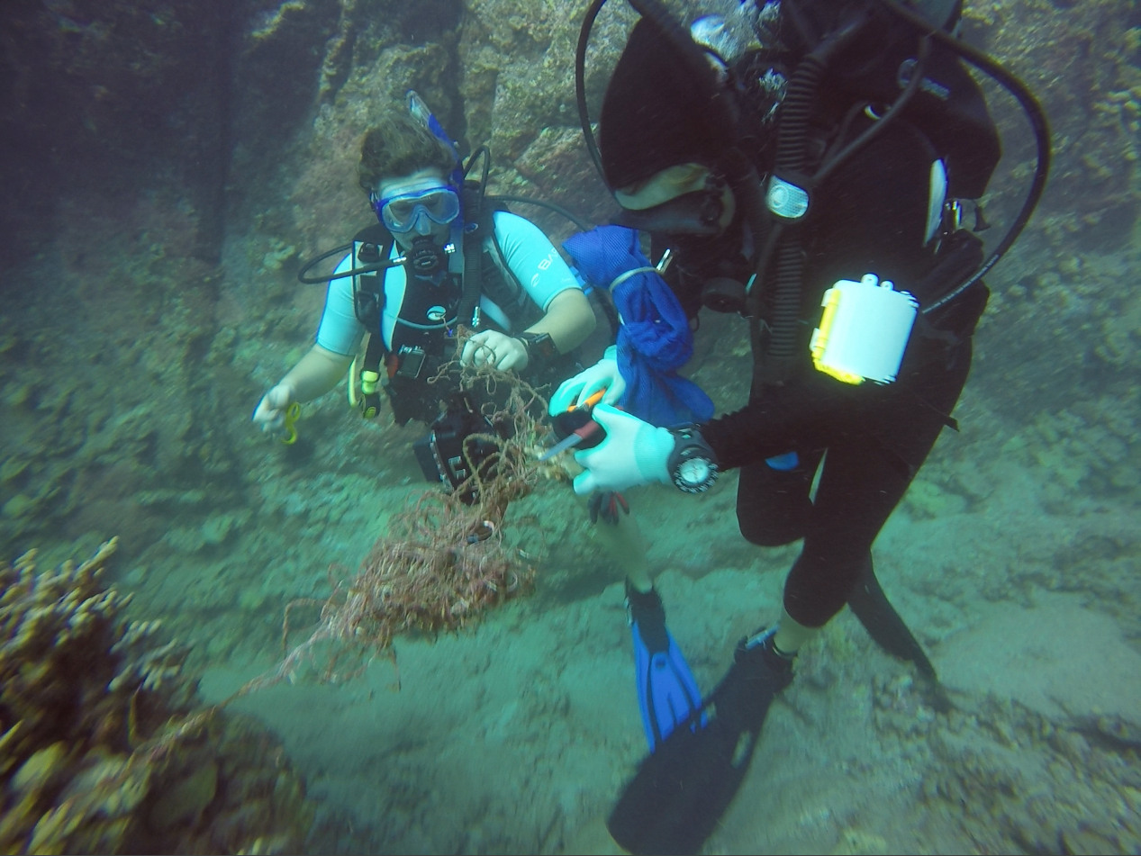 Removing Fishing Line from the Reef