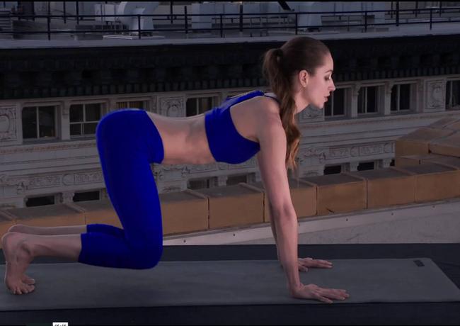 Tara Stiles Yoga.png