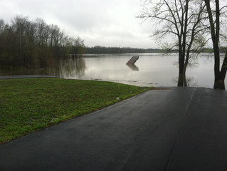 Flooded at Delaware