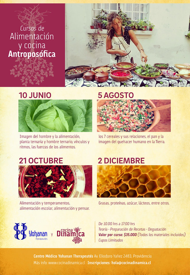 Cursos de Alimentacion y cocina Antroposofica