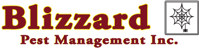 Blizzard_Logo_edited.png