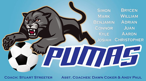 Pumas 1