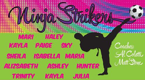 Ninja Strikers 2
