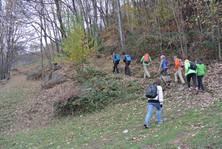 Salita nel bosco genitori e alunni  (1).