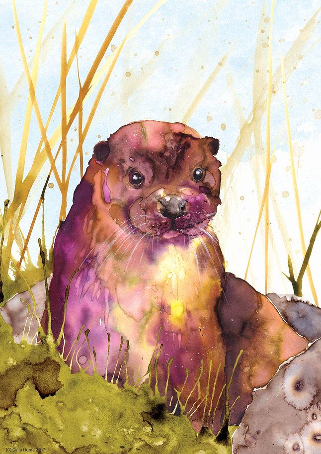 OtterposterRGBsaturation.jpg