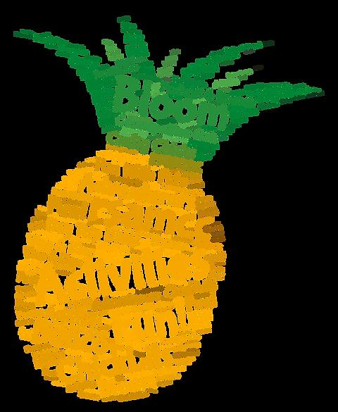 Activities Pineapple Transparent .png