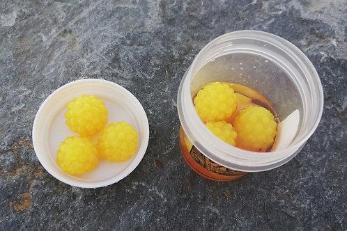 Mûre jaune flottant x6 grand pot