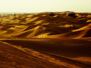 Hello from the desert!