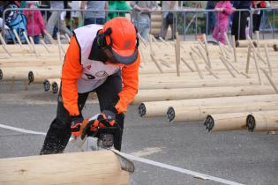 В Республике Коми завершился Чемпионат России среди вальщиков леса «Лесоруб-2016»