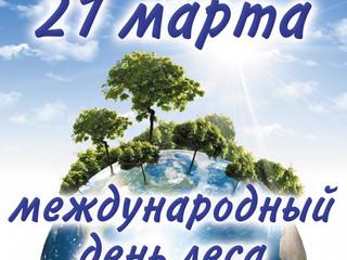 21 марта в мире в четвертый раз отмечается Международный день лесов (International Day of Forests)