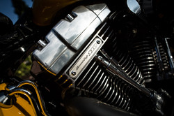 Harley Davidson Cross Bones Engine