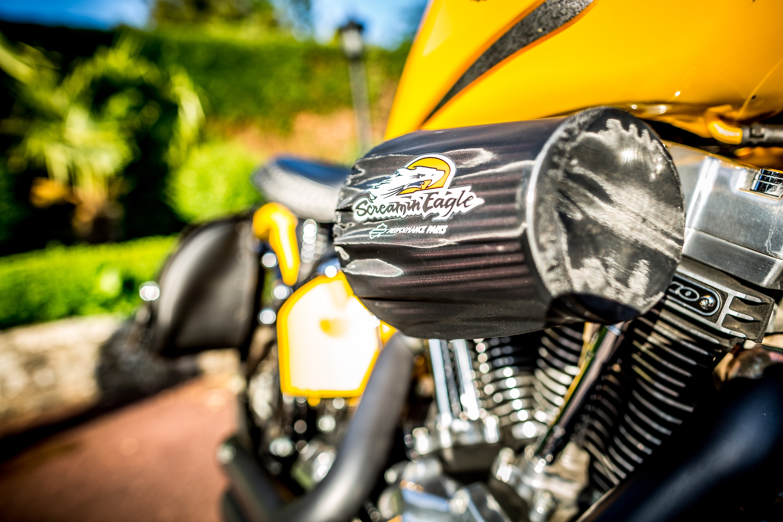 Surrey Harley Davidson