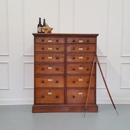 Large Museum Collectors' Cabinet c1850