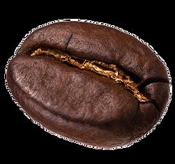 coffee bean single.png