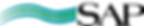 SAP RY logo