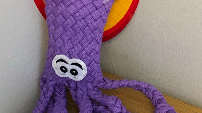Knotty Doggy - Octopus