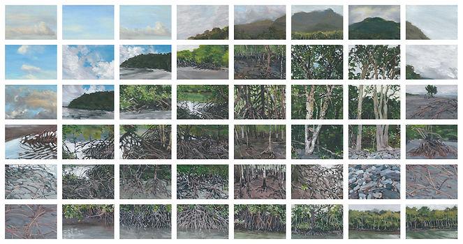 Mangroves_small.jpg