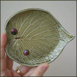 Davidii Leaf Green