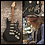 Thumbnail: GFA Rex Brown & Vinnie Paul * PANTERA * Band Signed Electric Guitar PROOF COA