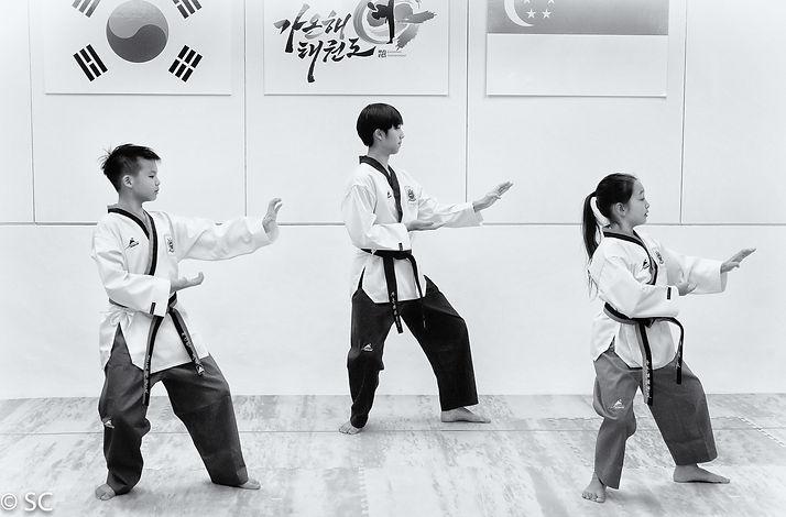 gaonhae-taekwondo_39578627111_o.jpg