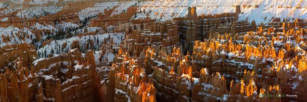"""Paradise City"" - Utah"
