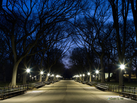 """A Night To Remember"" - Central Park, NY"