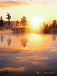 """Here Comes the Sun"" - Idaho"