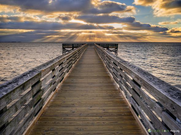 """""""Dreams""""- Florida"""