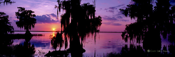 """Spirit on the Water""- Florida"