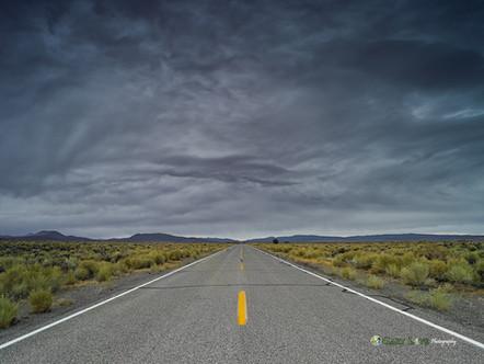 """Free"" - Nevada"