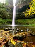 """Sweet Leaf"" - Oregon"