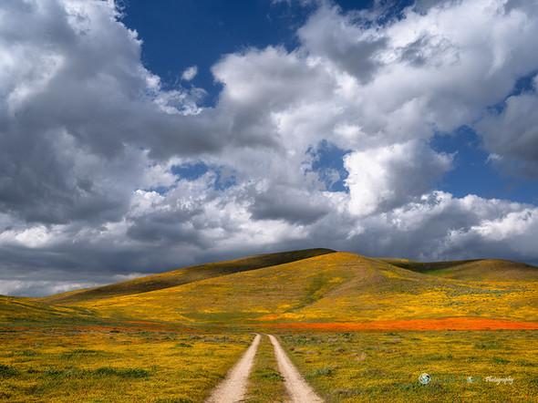 """Hit the Road Jack"" - California"