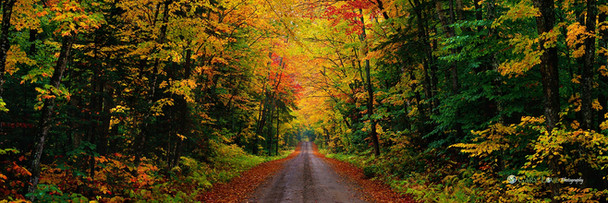 """""""Take the Long Way Home"""" - New Hampshire"""