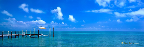 """""""Tangled up in Blue"""" - Florida"""