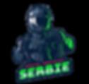 Serbie Stream logo.png