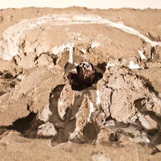 sandboxdetail.jpg