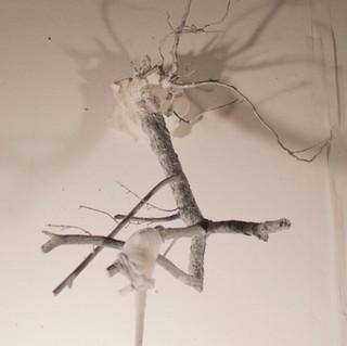 branchdetail2.jpg