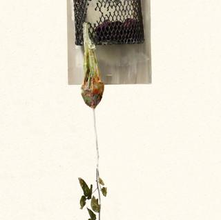 rosecage.jpg