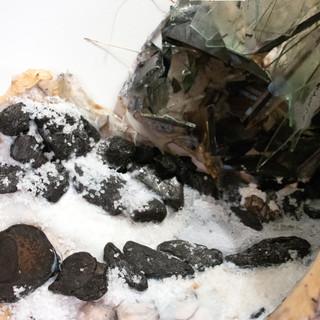 "Dionysus Chalice chicken wire, fabric, acrylic paint, salt, stone, and glass 14"" x 11"" x 16"""