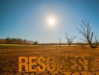 Sécurité alimentaire et Gestion des Ressources Naturelles