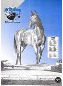 horseracing program design