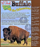 history, wildlife in Montana
