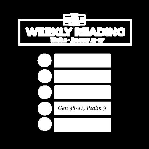 Week2_Trans-02-02.png