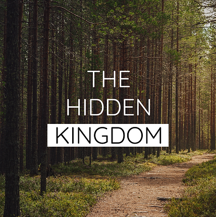 The Hidden Kingdom - Social.png