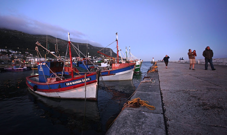Small-scale fishing rights in Western Cape set to be scrapped, says Creecy