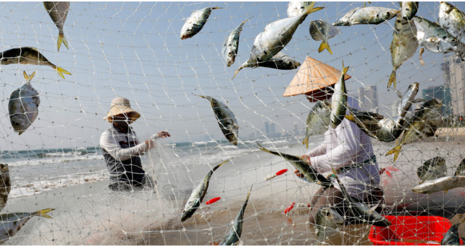 Track and trace: transparent and digitized fishing data is crucial to ocean resilience