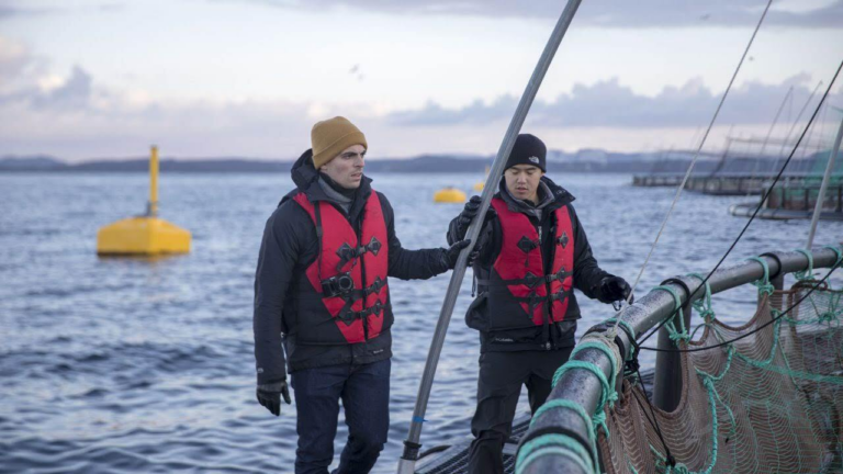 How technology is helping the aquaculture industry improve sustainability.