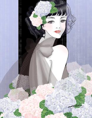 Ajisai - Hydrangeas