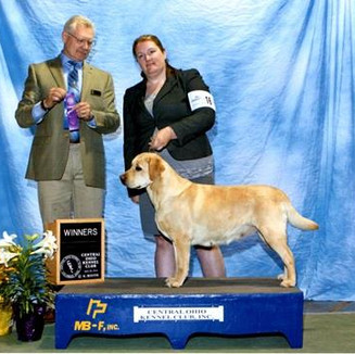 Winners Bitch at Central Ohio Kennel Club
