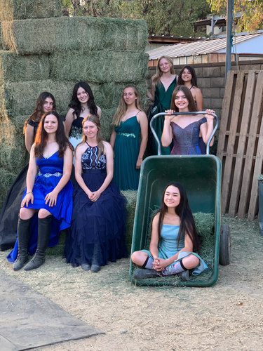 Fox girls in the hay barn